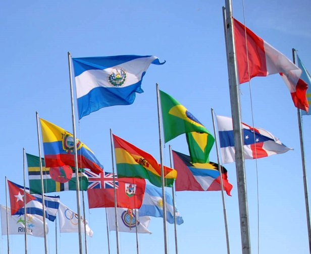 LAC_flags